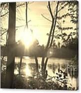Swampy Sunset #4 Canvas Print
