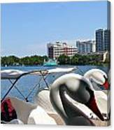 Swan Boats And Buildings Canvas Print