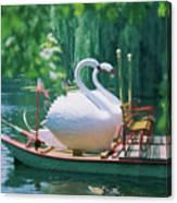 Swan Boats In A Lake, Boston Common Canvas Print