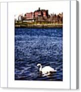 Swan Lake Poster Canvas Print