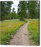 Swan Lake Trail In Grand Teton National Park-wyoming Canvas Print