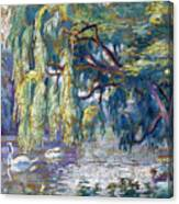 Swans Family . Forest Of Boulogne  Canvas Print