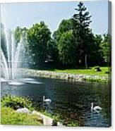 Swans With A Fountain Canvas Print