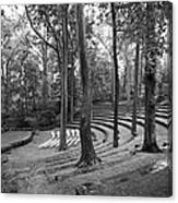 Swarthmore College Scott Amphitheater Canvas Print
