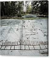 Sweden. Tanum. Petroglyphs Of Tanum Canvas Print