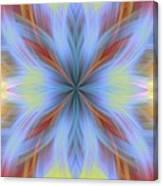 Sweeping Star Burst 1 Canvas Print