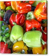 Sweet Bell Peppers Assorted Colors Canvas Print