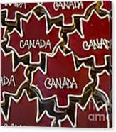 Sweet Canada... Canvas Print