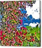 Sweet Escape Canvas Print