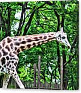 Sweet Giraffe Canvas Print