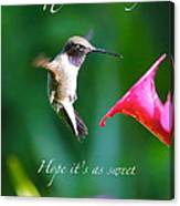 Sweet Hummingbird Birthday Card Canvas Print