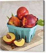 Sweet Nectarines Canvas Print