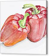 Sweet Red  Paprika Pepper Canvas Print
