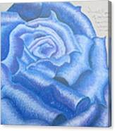 Sweet Roses Be Canvas Print