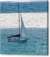 Sweet Sail Canvas Print
