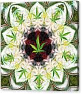 Sweetleaf Mandala Canvas Print