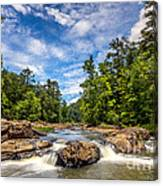 Sweetwater Creek I Canvas Print