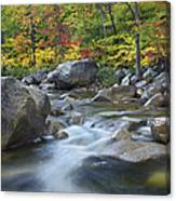 Swift River In Fall White Mountains New Canvas Print