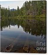 Swim Lake Canvas Print