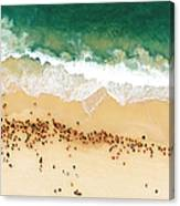 Swimmers Waiting For An Ocean Race To Canvas Print