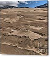 Swimming In The Dunes Canvas Print