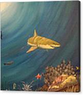 Swimming With Sharks Canvas Print