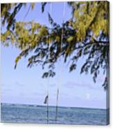 Swing Front Of The Ocean Canvas Print