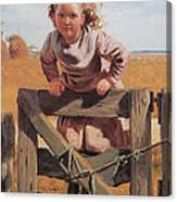 Swinging On A Gate Detail Canvas Print