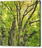Swirls Of Green Canvas Print