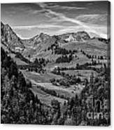 Swiss Valley Bw Canvas Print