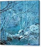 Sycamores And River Canvas Print