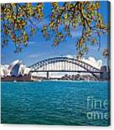 Sydney Harbour Skyline 2 Canvas Print