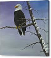 Symbol Of Freedom Canvas Print