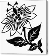 Symbol Passion Flower Canvas Print