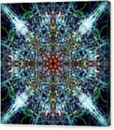 Symmetrical Silk Strands Canvas Print