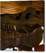 T Rex Head Canvas Print