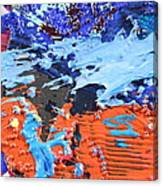 T S 13 Canvas Print