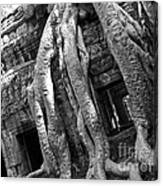 Ta Prohm Roots And Stone 03 Canvas Print