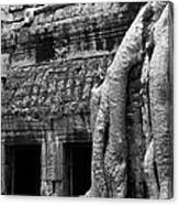 Ta Prohm Roots And Stone 05 Canvas Print