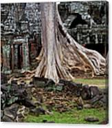Ta Prohm Temple Ruins Canvas Print