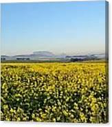 Table Mountain At The Horizon Canvas Print