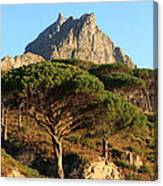 Table Mountain View Canvas Print