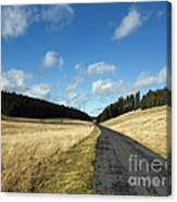 Tableland With Road Canvas Print