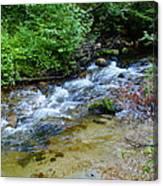 Tacoma Creek 2 Canvas Print