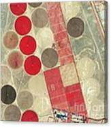 Tadco Farm Saudi Arabia Satellite Canvas Print