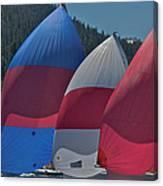 Tahoe Chutes Canvas Print