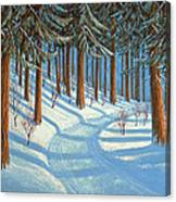Tahoe Forest In Winter Canvas Print