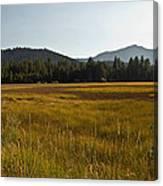 Tahoe Keys Meadow Canvas Print