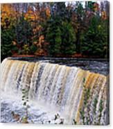 Tahquamenon Falls I Canvas Print