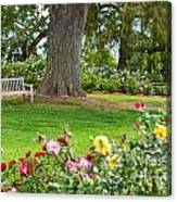 Take A Seat - Beautiful Rose Garden Of The Huntington Library. Canvas Print